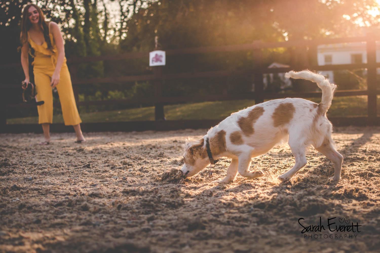 Pet Photographer Essex
